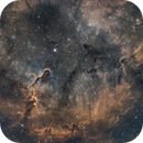 IC1396 - Elephant's Trunk Nebula,                                Tristan Campbell