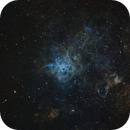 Tarantula nebula,                                Rogerio Alonso