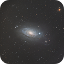 M63 (NGC 5055) - the Sunflower Galaxy,                                Tom Zaranek