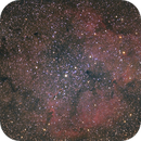 IC1396 - Elephant's Trunk nebula,                                Kharan
