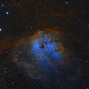 Ic410 NGC1893,                                djdom