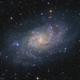 Messier 33, Triangulum Galaxy, sLRGBHa,                    Alexander Sorokin