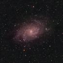 M33 Triangulum Galaxy,                                henrygoo74d