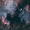 North America + Pelican Nebulae (NGC7000 - IC 5070) HOORVB,                                Ysty