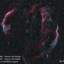 The Veil Nebula   HOO,                                Paul Borchardt