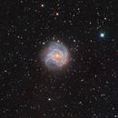 Messier 83 - Southern Pinwheel Galaxy :-),                                Daniel Nobre