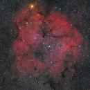 IC 1396 Elephanttrunk,                                Gabriel Siegl