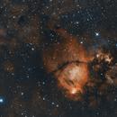 IC1795 HaOIII,                                  Matthias Steiner