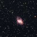 M1 - CRAB NEBULA,                                jbconti