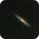 NGC 253 (Sculpter Galaxy),                                Ken Sturrock