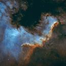 NGC7000 in bi-color,                                Dominik Ehrhardt