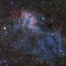 The Lion Nebula - SH2-132,                                Rafael Schmall