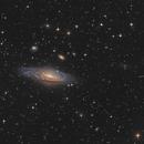 Deer Lick Group NGC7331,                                  Arnaud Peel