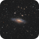 Deer Lick Group NGC7331,                                Arnaud Peel