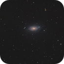 M63 Sunflower Galaxy,                                Rolf Dietrich