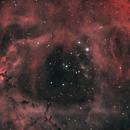NGC2244 HOO - 200mm f/6,                                CraigT82