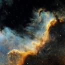 Cygnus Wall, in SHO,                                John Robbins