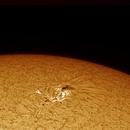 Rare Sunspot,                                AstroHawk