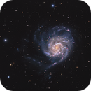 Messier 101 the wrong way,                                Anthony Quintile