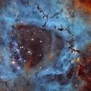 The Rosette Nebula (NGC 2244): Animals on Parade,                                Luca Marinelli