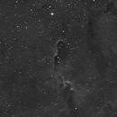 IC1396 The elephant trunk in Ha & HaRGB,                                Christiaan Berger