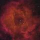 NGC 2237 Rosette Nebula in HOS,                                Joe Fox