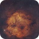 Elephant Nebula |IC-1396,                                Tarun Kottary