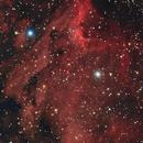 IC5070 - Pelican Nebula,                                Massimo Micieli
