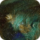 NGC 2264,                                JonathanBlake