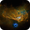 NGC 2014 and 2020 in HST palette,                                John Ebersole