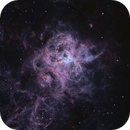 NGC 2070 - The Tarantula Nebula,                                Rodrigo Andolfato