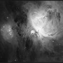 M42-Ha,                                quercus