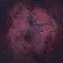 2 Panel IC1396,                                SemiPro