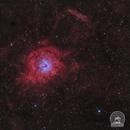 SH2-170 - the Little Rosette Nebula,                                  Marcel Drechsler