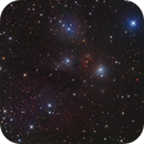 NGC 2170 (vdB 67) with NGC 2182,                                Madratter