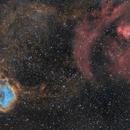 NGC2237 - NGC2264 La Rosette et le Cône,                                ZlochTeamAstro
