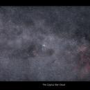 Cygnus Star Cloud,                                  William Maxwell