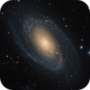 Galactic Pair in Ursa Major,                                Alex Roberts