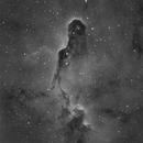 IC 1396- Elephant's Trunk Nebula-  Hydrogen,                                Matt Harbison