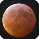 January 2019 Lunar Eclipse,                                Nico Carver