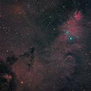 NGC 2264 - Cone Nebula and Christmas Tree Cluster,                                DustSpeakers