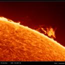 Sun limb in H-Alpha,                                Łukasz Sujka