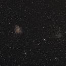 La galaxie du feu d'artifice NGC6946 et son amas ouvert NGC6939,                                Nicolas JAUME