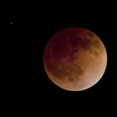 Lunar Eclipse,                                whitenerj