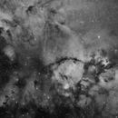 IC 1795 The Fishhead Nebula Ha,                                Frank Iwaszkiewicz