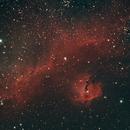 Seagull Nebula,                                KiwiAstro