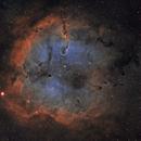 IC1396,                                Tom Carrico