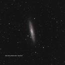 NGC253,                                Warren