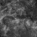 NGC 6914 - beautiful region in Cygnus,                                Andre van der Hoeven