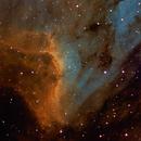 IC 5070 Pelican Nebula,                                Mathias Radl